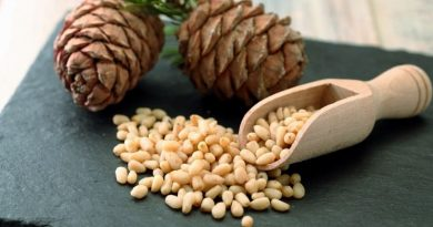 Benefits of pine nuts