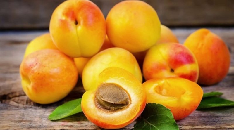 benefits of apricots