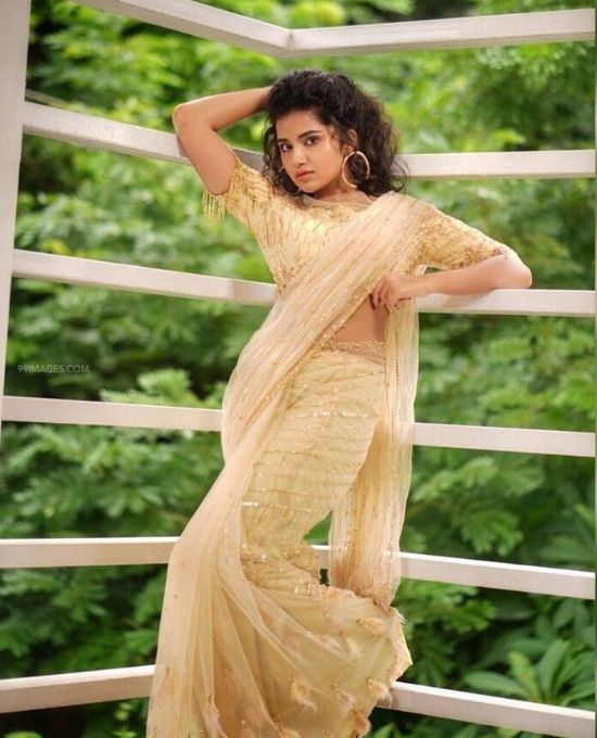 anupama parameswaran in net saree