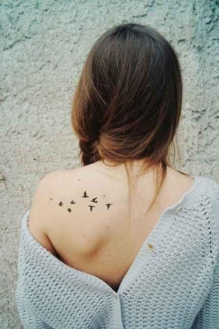 birds fly on Back